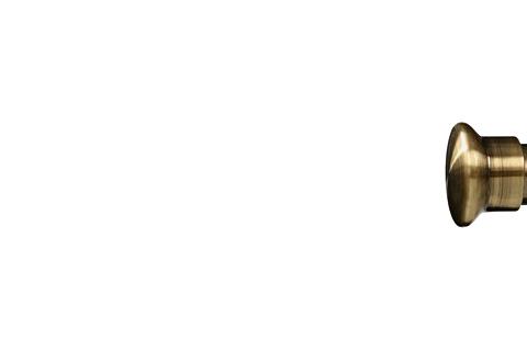 Grzybek - Złoto