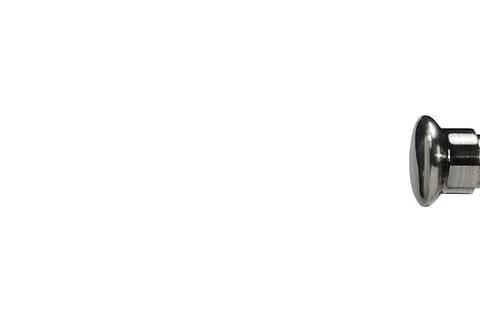 Grzybek - Antracyt